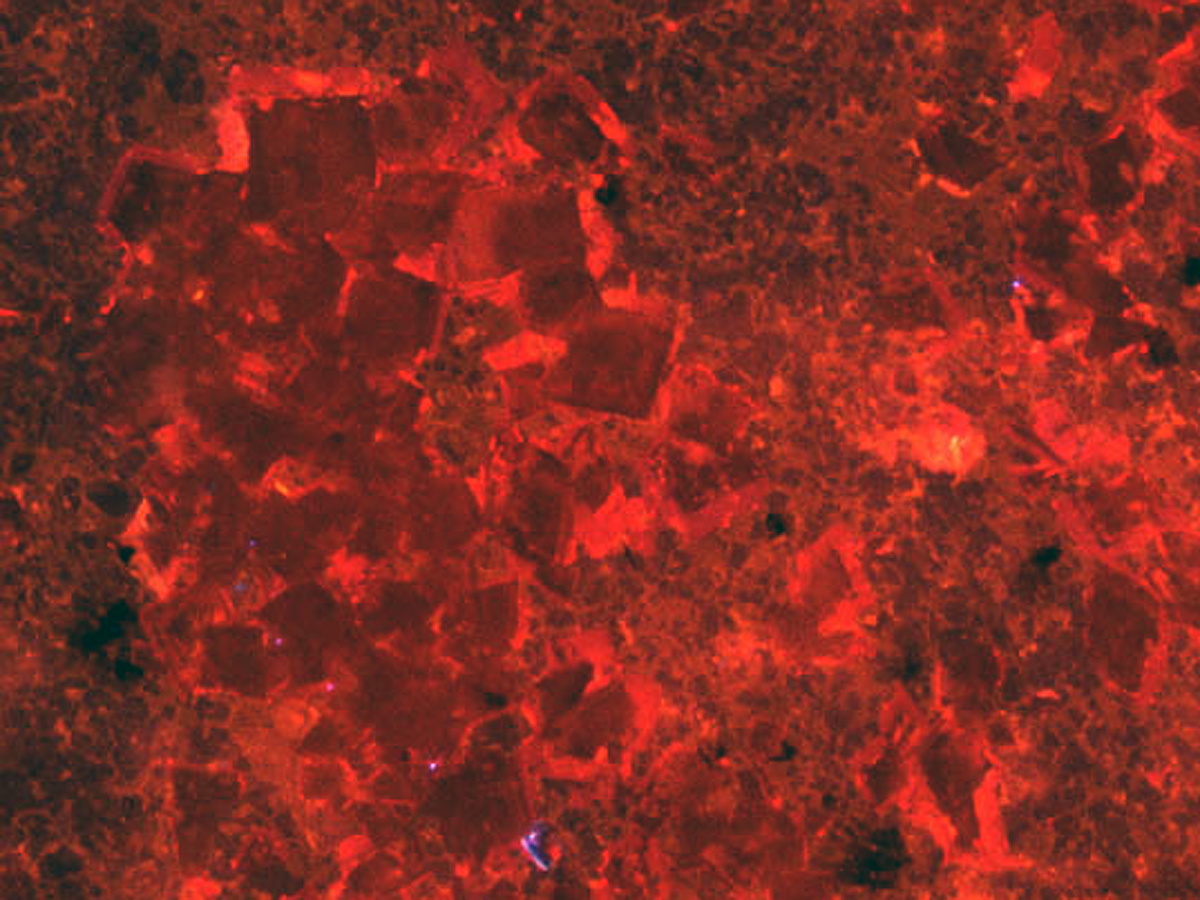 Cathodoluminescence image showing relict halite cubed within Atar Group evaporite facies